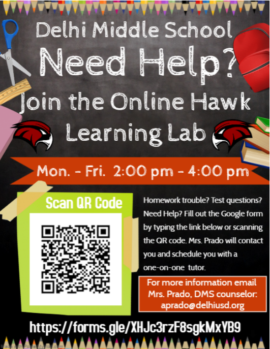 Online Hawk Learning Lab - After school tutoring