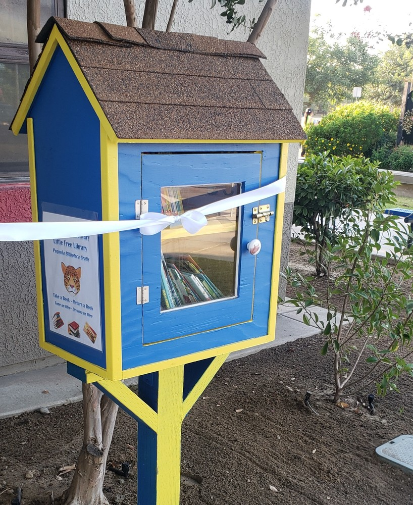 Harmony's Little Free Library
